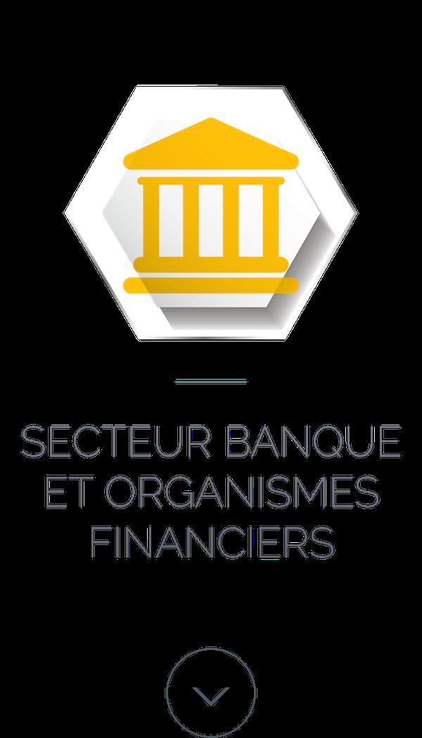 Secteur Banque et organismes financiers