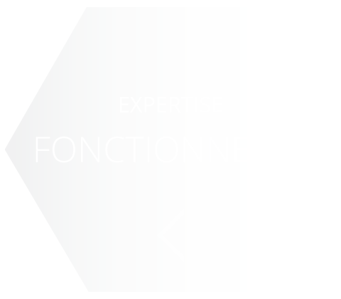 ICN-FONCT